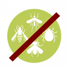 Anti insect